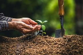 Брифинг «Земля – бесценный и уникальный ресурс. О мероприятиях по благоустройству и наведению порядка на земле»