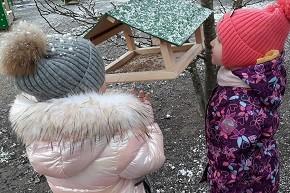 Витебские экологи подарили кормушки для птиц детским садам и школам Витебска