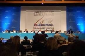 Министерство природных ресурсов и охраны окружающей среды принимает участие в Сегменте высокого уровня 14-го совещания Конференции Сторон Конвенции о биологическом разнообразии