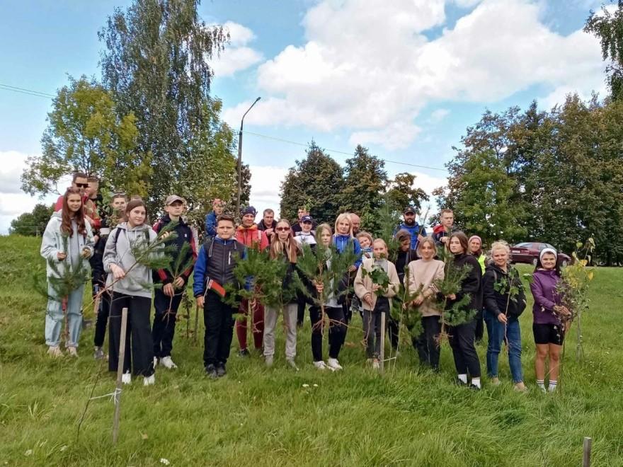 Акция по озеленению в Миорском районе