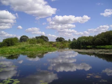 The Styr floodplain