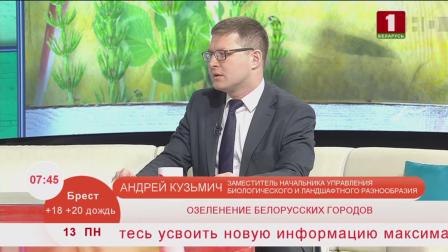 """В этом году все желающие белорусы могут присоединиться к акции """"Обустроим малую родину"""""""