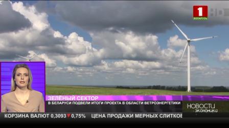 В Беларуси подвели итоги проекта в области ветроэнергетики